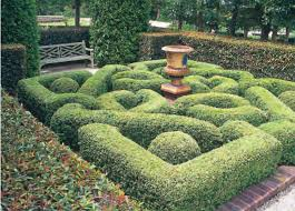 Small Picture Creating a Formal Garden in a Small Space ACC Distribution