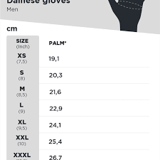 Dainese Size Chart Dainese Carbon D1 Gloves Long Black White Red Buy Now Get