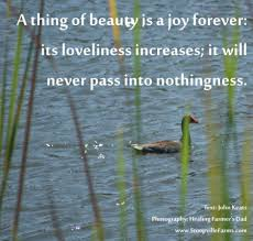 John Keats Quotes A Thing Of Beauty Best of A Thing Of Beauty Is A Joy Forever Its Loveliness Increases It