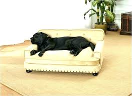 ultimate dog blanket for couch32