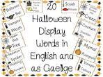 english to gaeilge