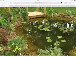 Small Picture A wildlife pond for my cottage garden Ponds Pinterest