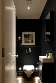 lighting a bathroom. Model What Are The Best Bathroom Plants To Choose? Choices In That Will Do Lighting A R