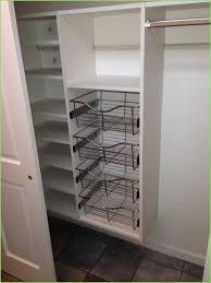 13 Best Reach In Closet Systems Minneapolis St Paul 8v2 Closet