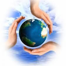Предмет экологического права Экологическое право