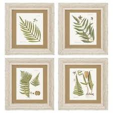 framed fern prints piece fern framed print set bombay on joss main on framed fern wall art with 10 best decor ideas images on pinterest ferns wall ideas and