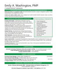 Resume Samples It Professional Summary Sample Senior Project Ma