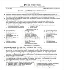 Executive Resume Template Delectable 28 Executive Resume Template Free PDF DOC Sample