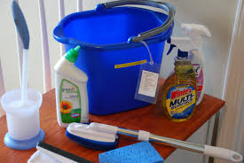 best bathroom cleaning tools by bathroom cleaning s