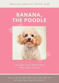 Pink Brown Missing Pet Poster Favorites Pinterest Sample