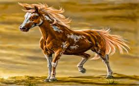 black and white paint horse wallpaper. Wonderful Wallpaper FunMozar U2013 Wild Horses In Black And White Paint Horse Wallpaper R