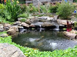 Pond How To Choose The Best Stone For Your Pond Aquareale Pond Blog