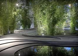 Small Picture 153 best Plant ideas bamboo images on Pinterest Landscaping