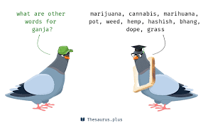 words dope and ganja are semantically