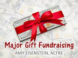 major gift fundraising an guide by amy eisenstein