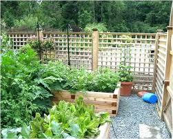 raised garden bed fence ideas surprising flower against along yards garden gear ideas