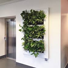 living green walls for better