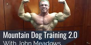 Image result for john meadows