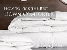 what to look for in a down comforter by segreto secrets