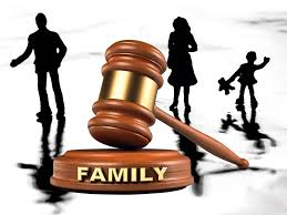 essay on the family courts in