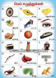 Alphabet Chart In Tamil Manufacturer In Madurai Tamil Nadu