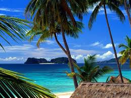 جزيرة ماوي Images?q=tbn:ANd9GcQydTvDIeK0ccw9GWfASMFgTzUQxgAYfs1EewW-93hYTs4XDrTh