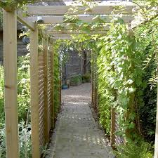 Small Picture Mark Lane Designs An Award winning UK garden designer