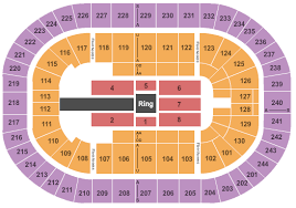 Little Caesars Arena Seating Chart Wwe Disney Concert Hall Online Charts Collection