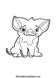 Free Pua Pig From Moana Coloring Page Thelittleladybirdcom