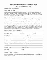 Medical Release Form For Grandparents Notarized Medical Consent Form Consent Letter Format Pdf Best Of