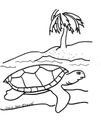 Small Picture Sea Turtle Coloring Page 2 Sea Turtle Inc