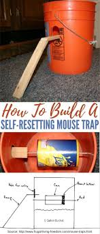 best ideas about to a mouse a mouse robert how to build a self resetting mouse trap these 5 gallon bucket mouse