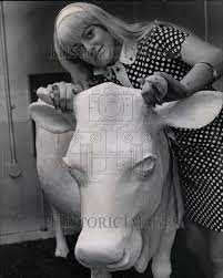 Marianne Riggs, 20, of Oak Park. 1968 Vintage Press Photo Print | Historic  Images
