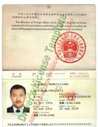 Psd - Drivers License Fake