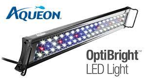 Aqueon Led Light Bulbs Aqueon Optibright Led Aquarium Light Fixture
