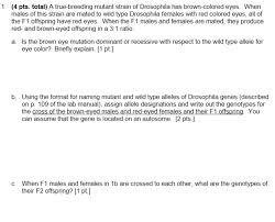 pts total a true breeding mutant strain of com 4 pts total a true breeding mutant strain of drosophila