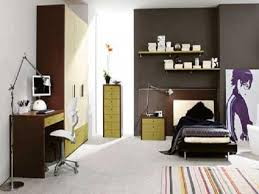 Amusing Bedroom Ideas For 16 Year Old Boy Pictures - Best idea ...