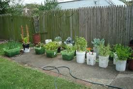 designing your container vegetable garden