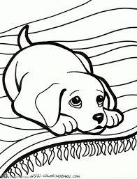 Kleurplaten Puppies En Kittens Kleurplaten Dieren Puppys Within