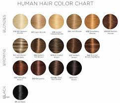 Hair Color Wella Color Charm Chart In 2019 Wella Color
