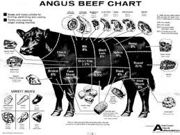Cow Meat Chart Poster Steer Poster Ideas Angus Cattle Aberdeen Angus In 2019