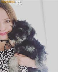 Experienced Pet Minder For Sale In Cranbourne West Vic Experienced