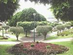 imagem de Tocantins Minas Gerais n-7