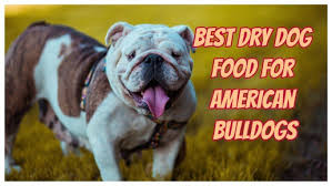 8 Best Dog Food For American Bulldogs Nutritious And