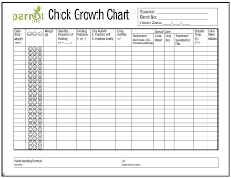 weekly weigh in charts parrot chick weight growth chart hari