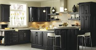 Kitchen Cupboard Furniture Thomasville Cabinetry