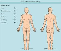Burns Fitzpatricks Dermatology 9e Accessmedicine