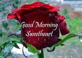 good morning love messages for girlfriend hindi. Good Morning Love Messages For Girlfriend Hindi Throughout Pinterest