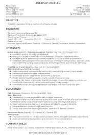 Examples Of It Resumes Gorgeous Resume For A College Student Amazing College Resume Samples Sample