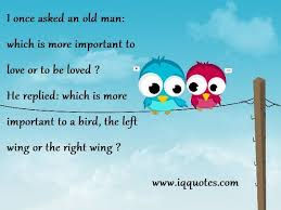 Quotes For Love Birds